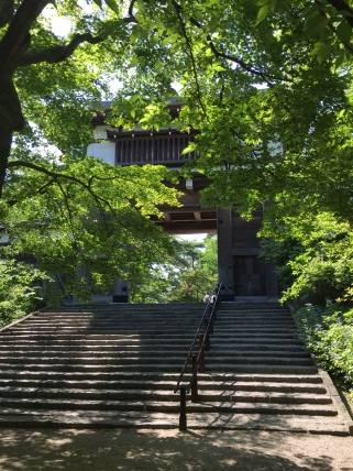 147 Akita 2015